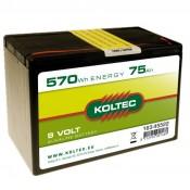 Batterij 163-45522 alkaline, Klein