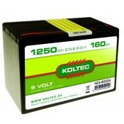 Batterij 163-45534 alkaline, Klein